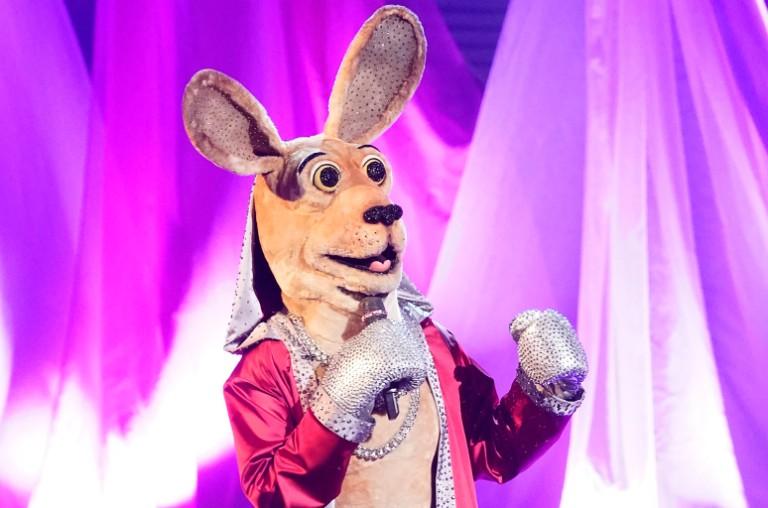 The Kangaroo, The Masked Singer
