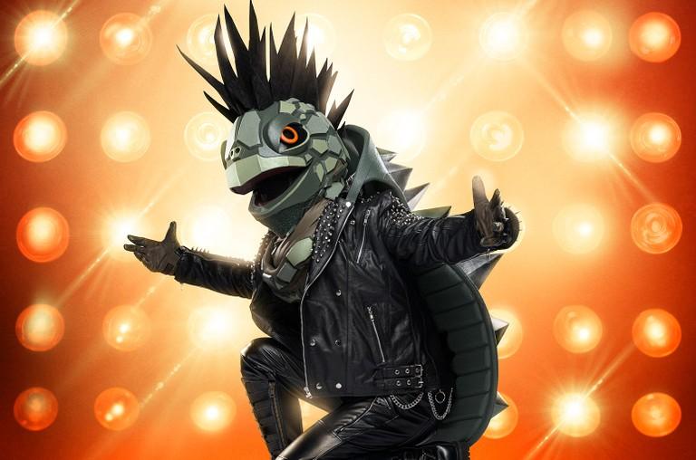 Turtle The Masked Singer
