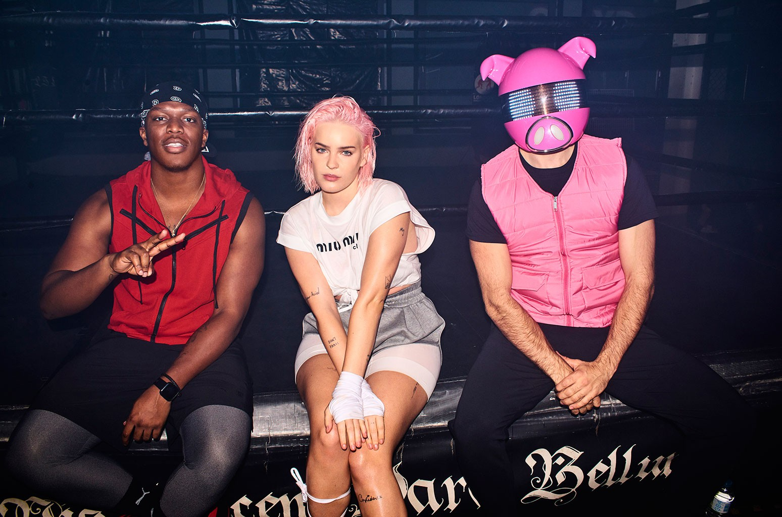 Real-Life Martial Arts Champ Anne-Marie Isn't Playing in Video for KSI & Digital Farm Animals Collab