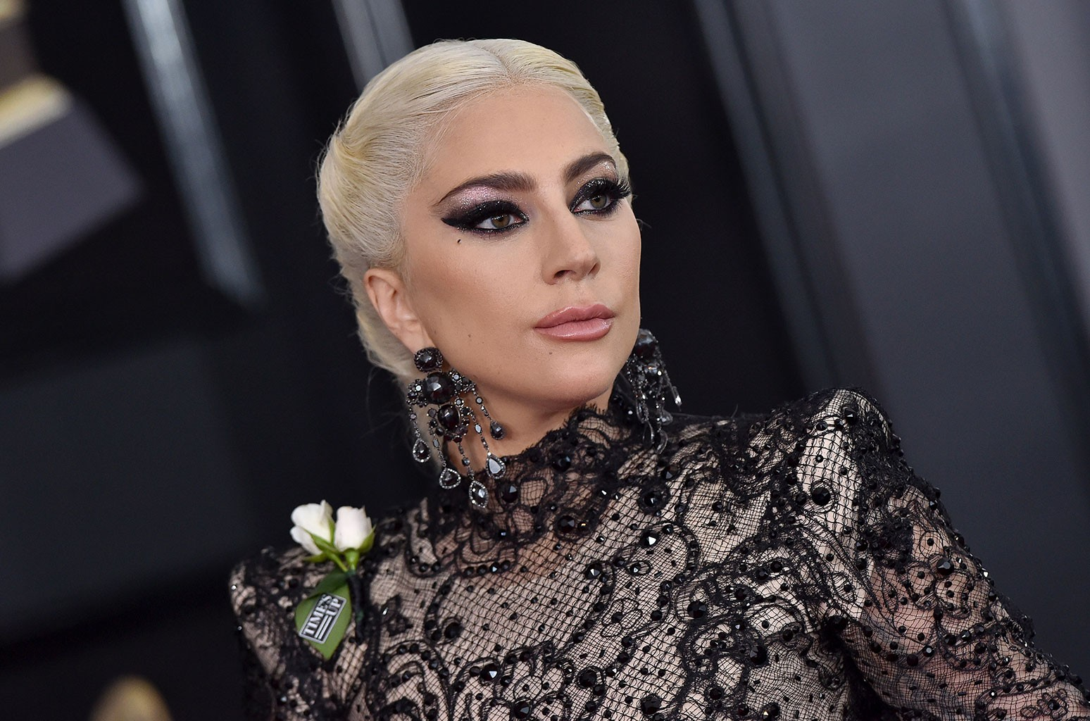 Lady Gaga Breaks Her Silence After Dogs Were Stolen ...