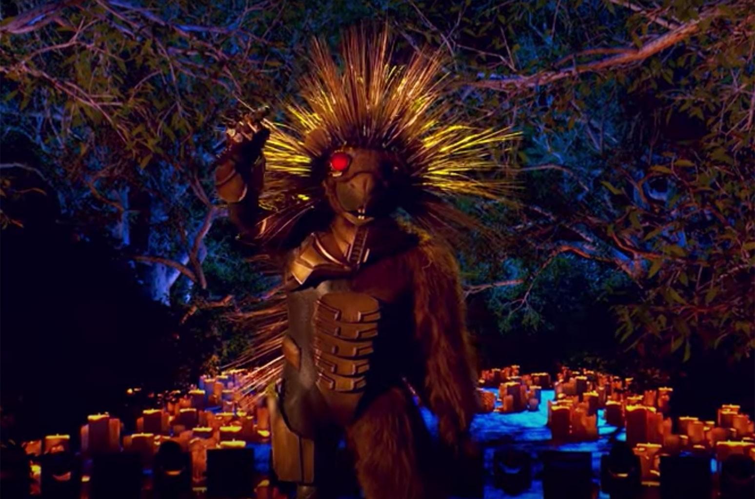 Robopine, The Masked Singer