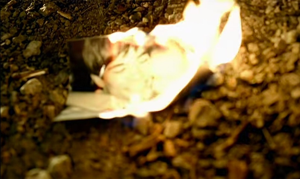 """Taylor Swift, """"Picture to Burn"""""""