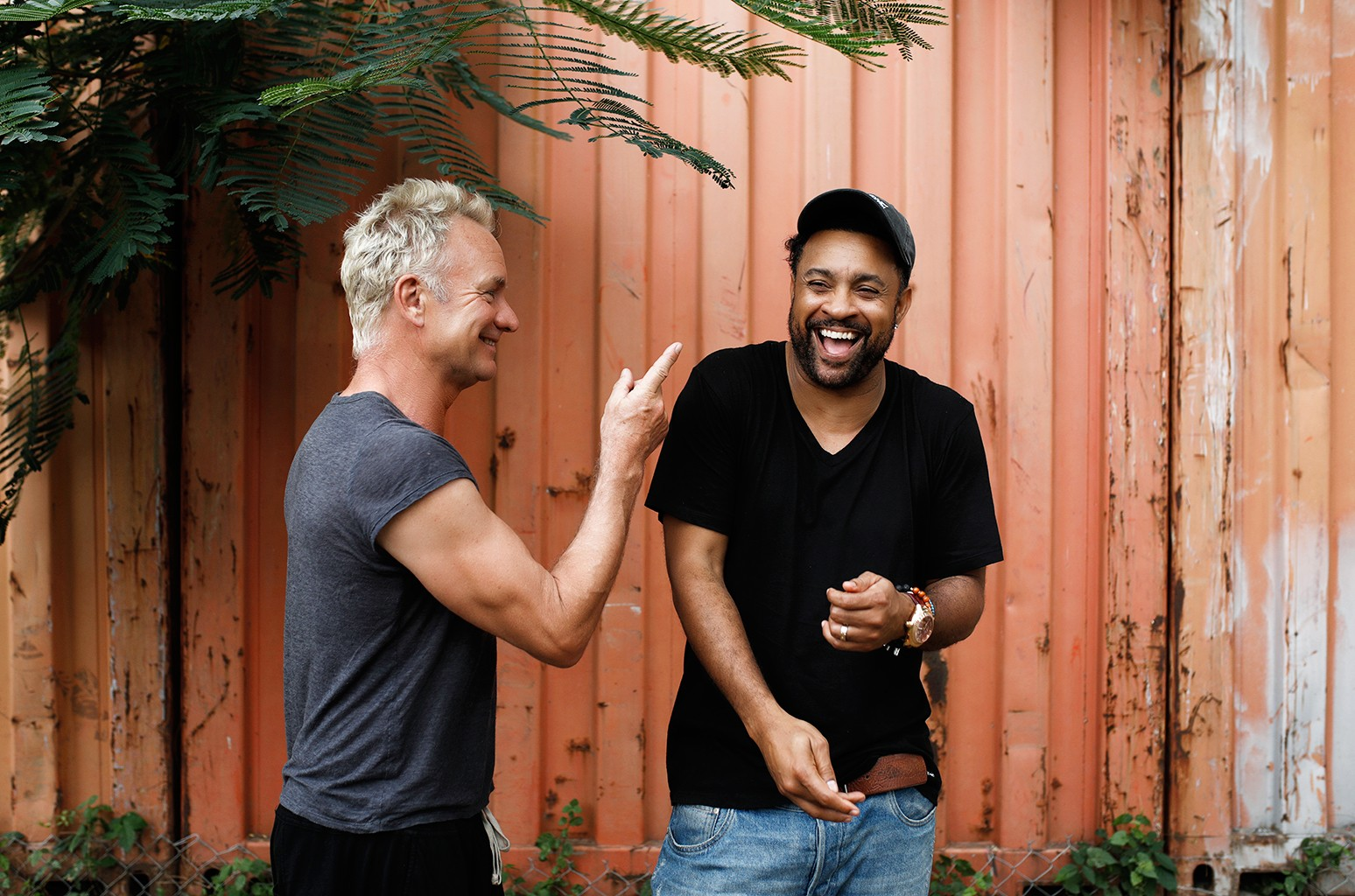 Sting & Shaggy