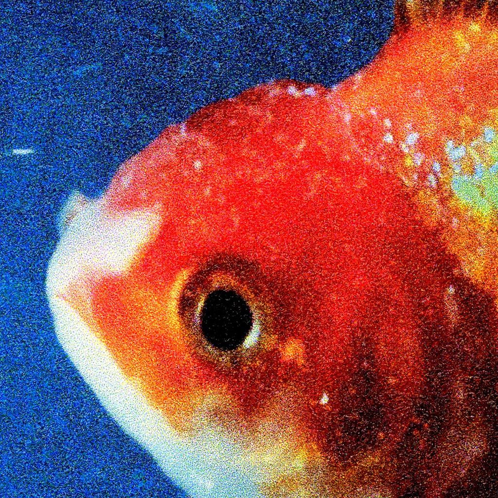Vince Staples, 'Big Fish Theory'