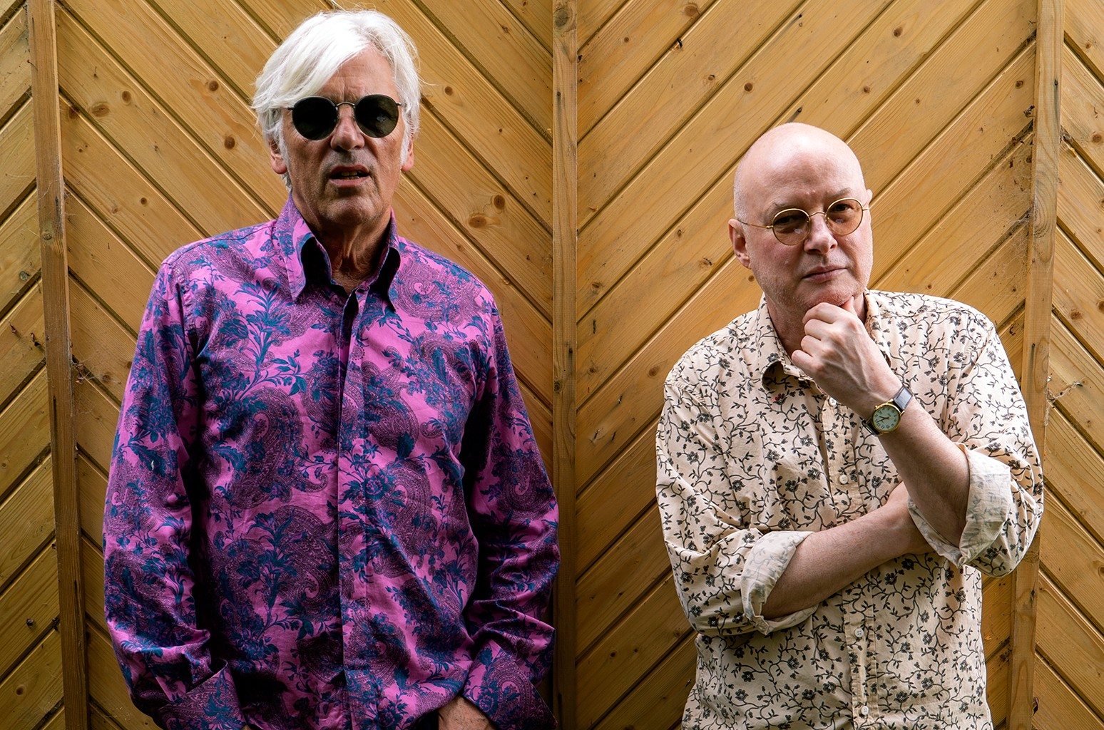 Robyn Hitchcock and Andy Partridge