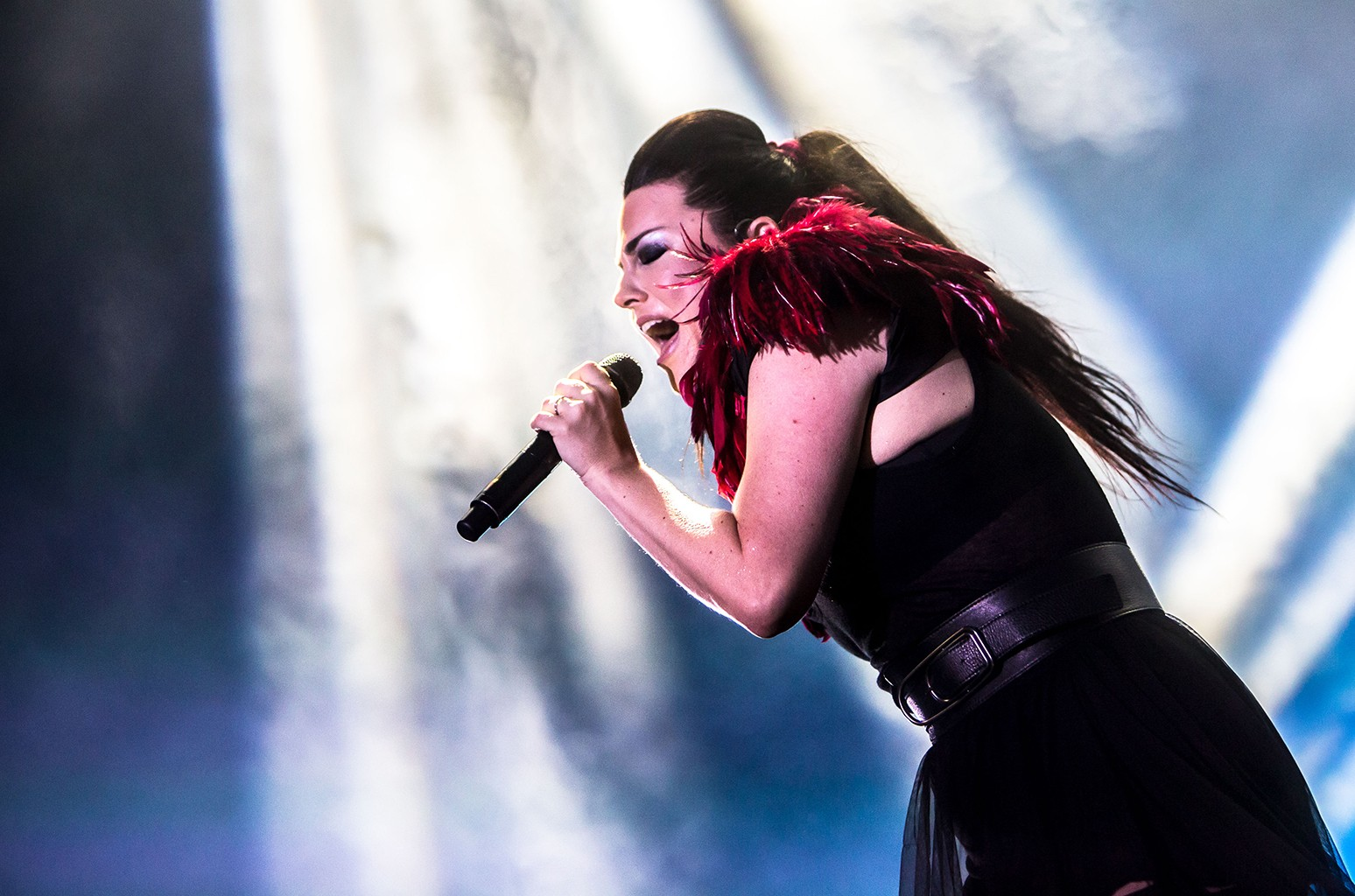 Amy Lee of Evanescence, 2017
