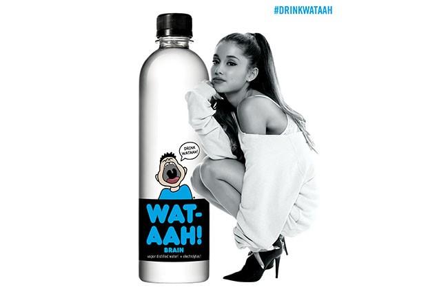 Ariana Grande, 2014.