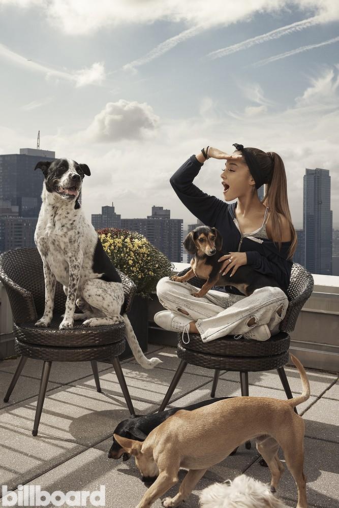ariana grande, puppies