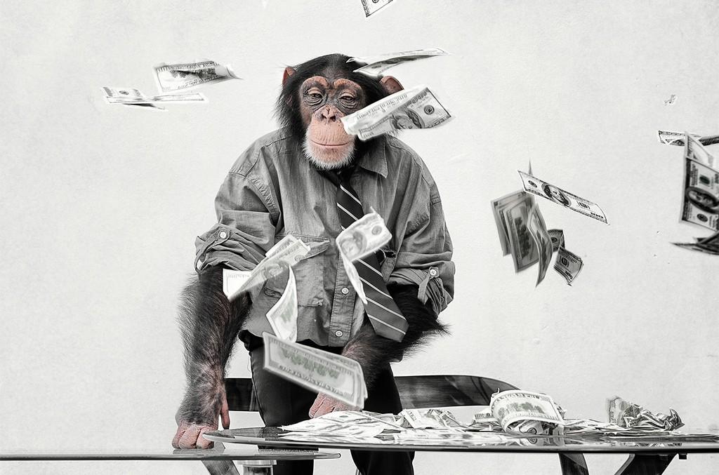 biz-monkey-with-cash-money-billboard-1548-650