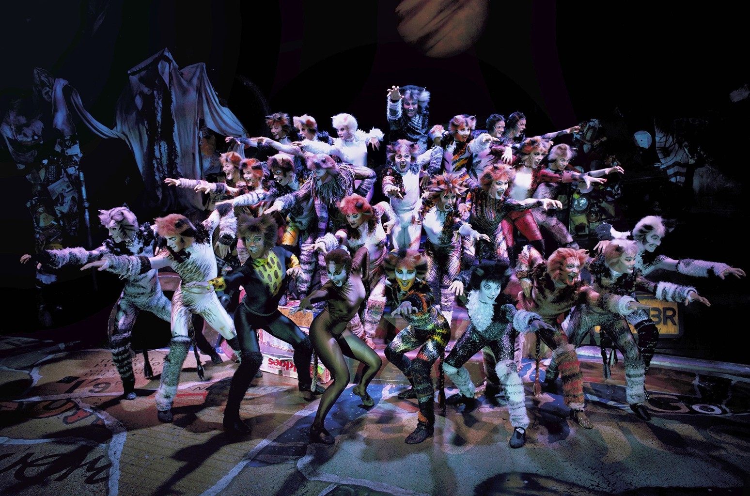 """The cast of """"Cats."""""""