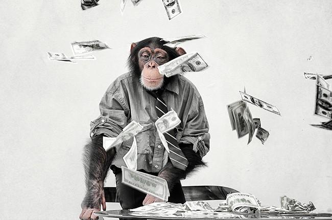 chimp-with-cash-billboard-650