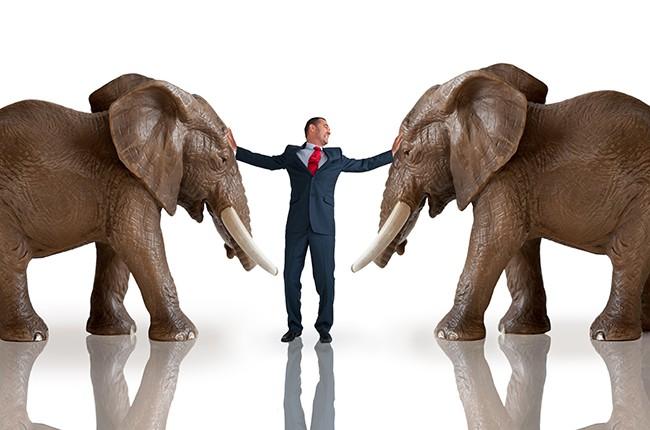 Elephants Businessman