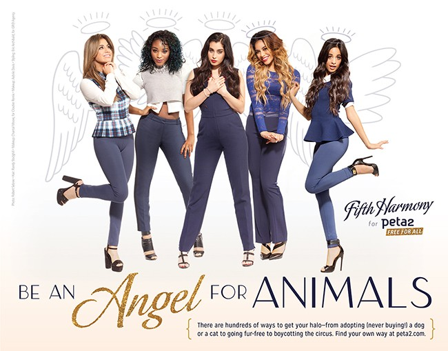 fifth harmony for pet 2
