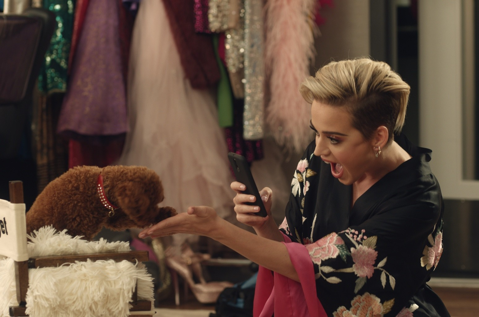 Katy Perry and her puppy Nugget star in Citi's Double Cash campaign.
