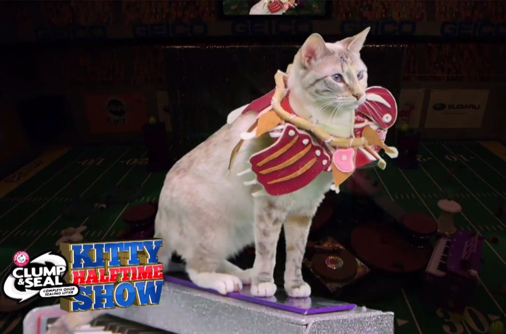 """Kitty Gaga performs """"Puparazzi"""" during the Puppy Bowl XIII Halftime Show."""