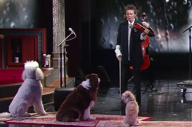 Laurie Anderson Dogs Colbert 2016