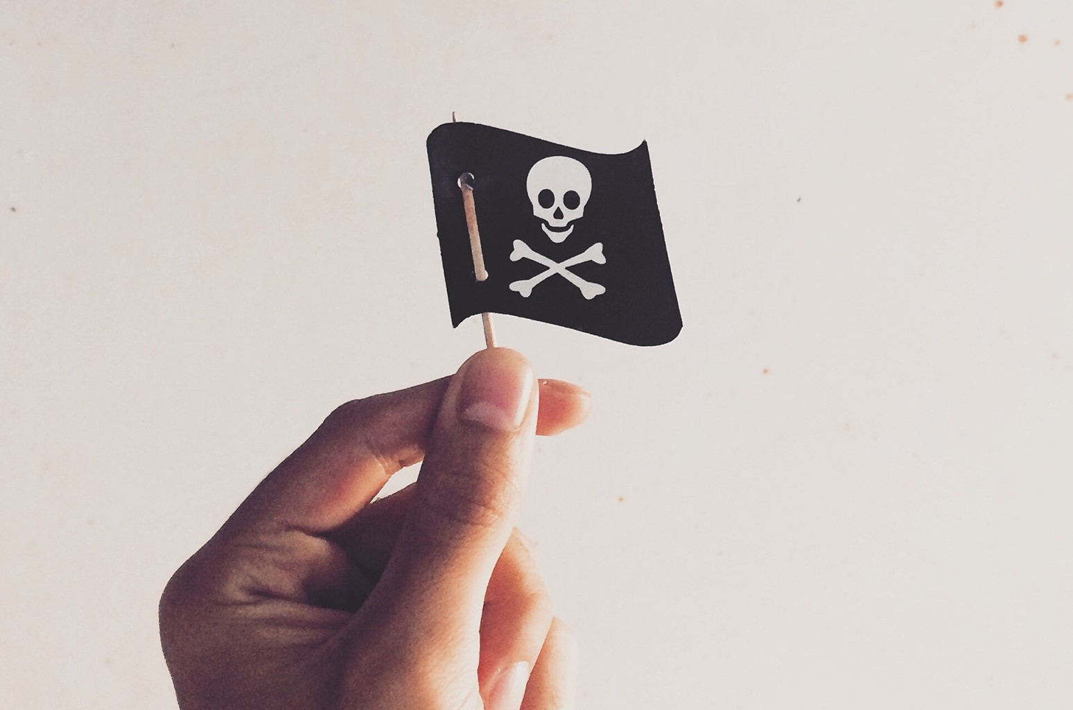 Pirate Flag Biz 2016
