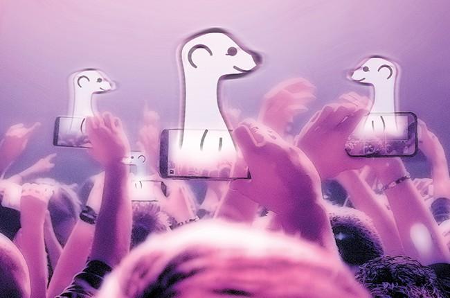 meerkat Concert crowd filming with smartphones.