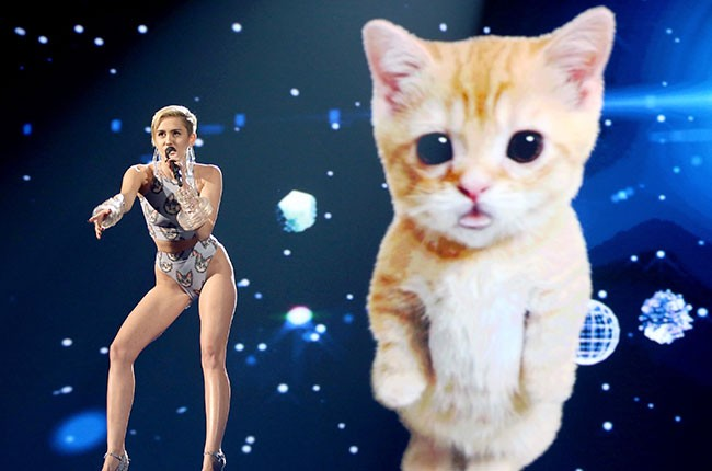 Miley Cyrus & Her Cat in 2013