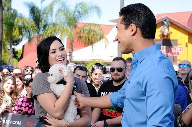 Demi Lovato Heartbroken Over Death Of Her Dog Buddy Billboard
