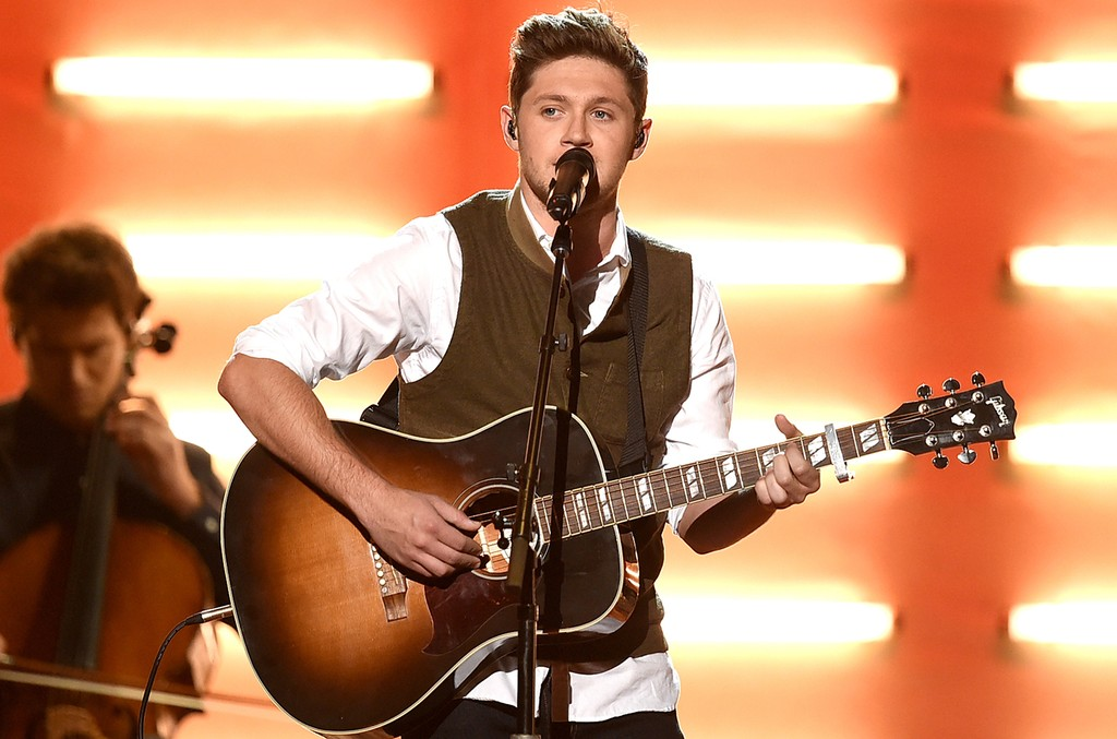 Niall Horan performs at the 2016 American Music Awards