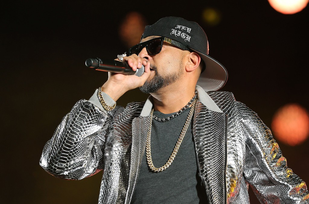 Sean Paul performs in 2016