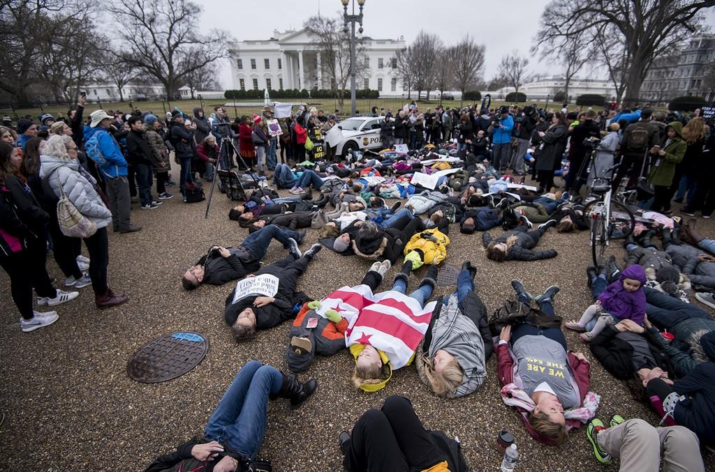 Gun Protest White House