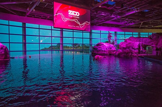 Zedd in Chicago